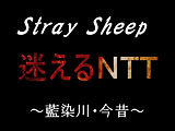 link to Stray Sheep 迷えるNTT〜藍染川・今昔〜